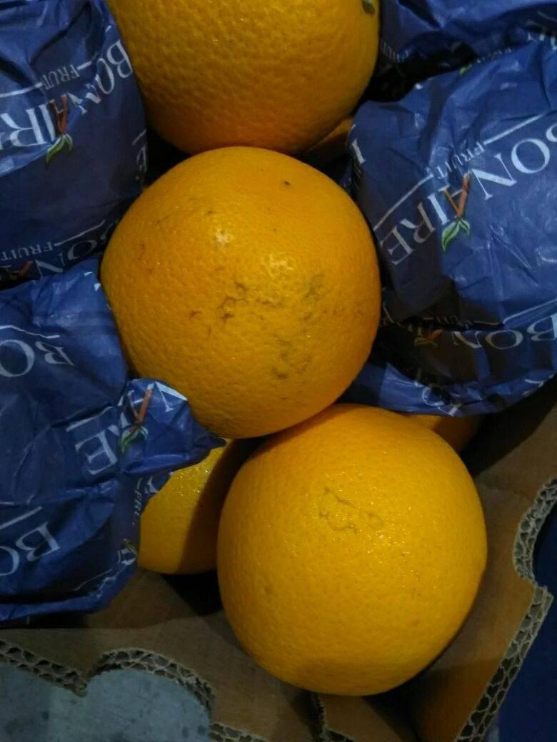 南非橙 60 - 65mm 4-8两