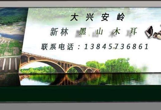 大兴安岭呼玛县大叶木耳菜 绿色