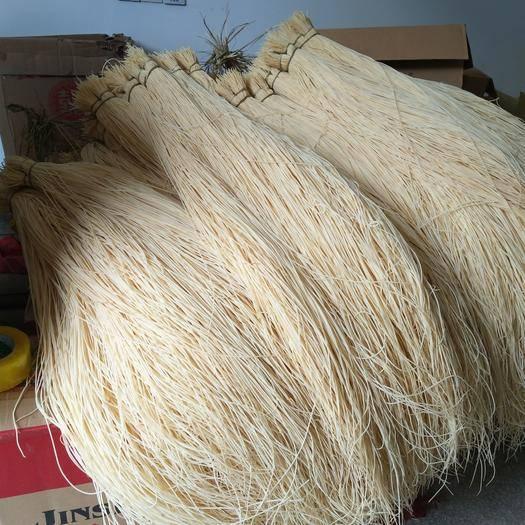 撫州燈芯草 燈蕊草零售批發燈蕊草各種包裝產品