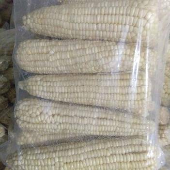 京甜糯2000 白粒 冻货