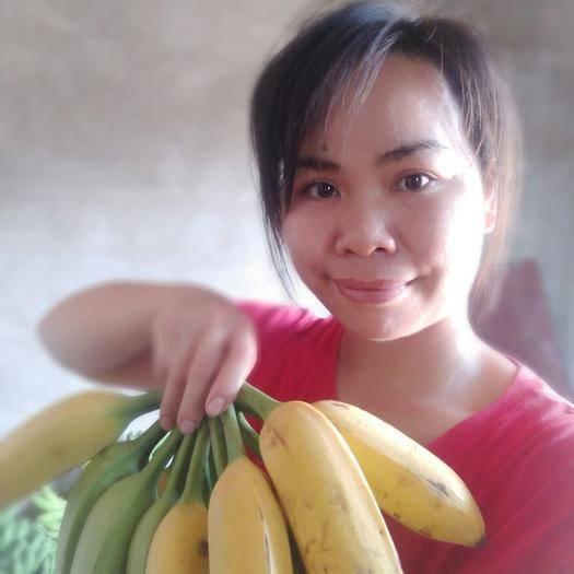 南宁土芭蕉 自家种植的芭蕉,22元包邮包售后,一件代发