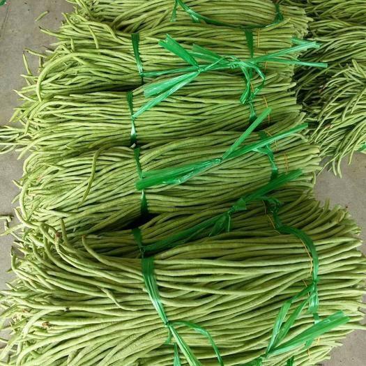 北海合浦县长豇豆 好货放心购,颜色青绿