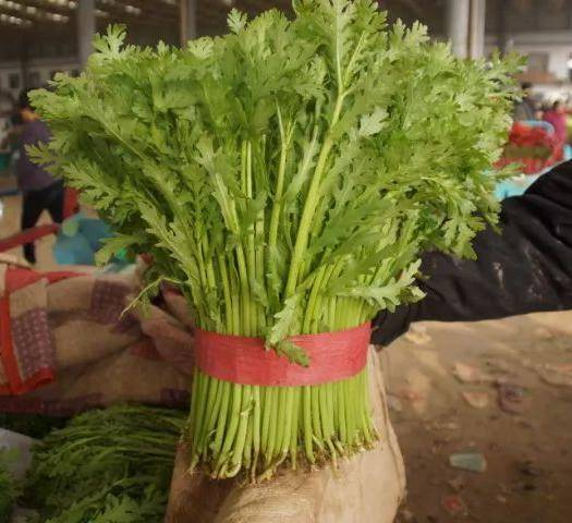 邯鄲叢臺區 我處精品茼蒿大量供應各種蔬菜好配貨
