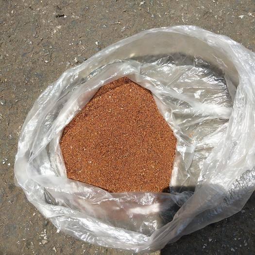 宣威市冰粉籽