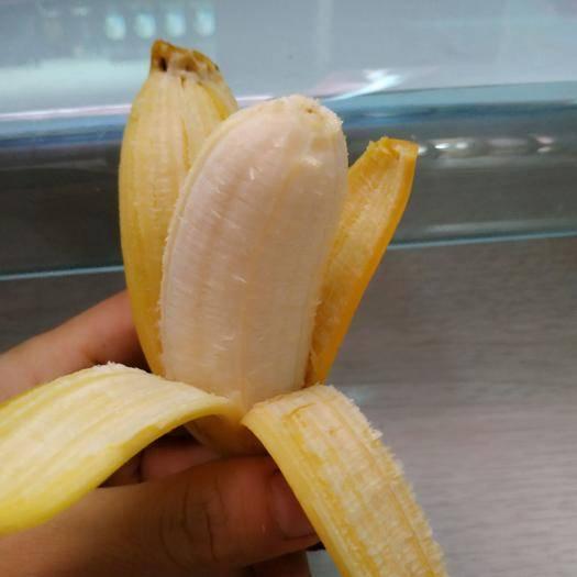 南寧西鄉塘區小米蕉 特價小果九斤19.8元實惠裝 特價雞蕉現摘新鮮發貨