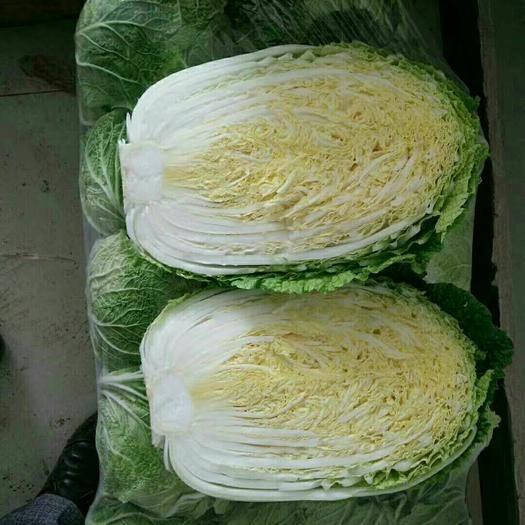 岳阳二青大白菜 3~6斤 净菜