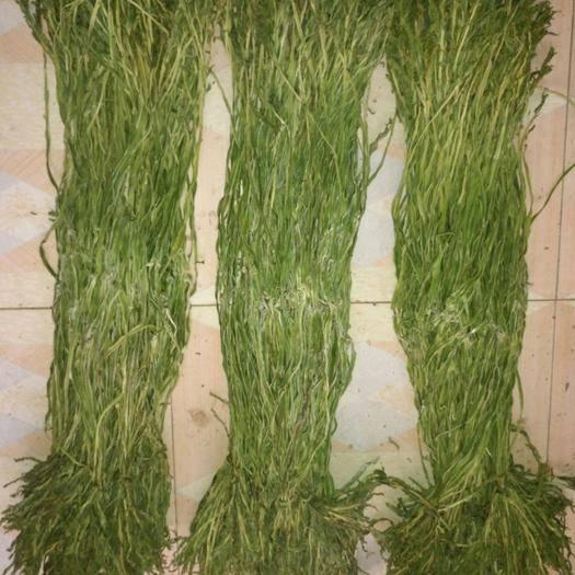 徐州睢宁县贡菜 ,纯天然绿色食品,口感极好,营养丰富,老少皆宜,自产自销