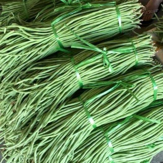 武汉黄陂区绿翡翠长豆角 40cm以下