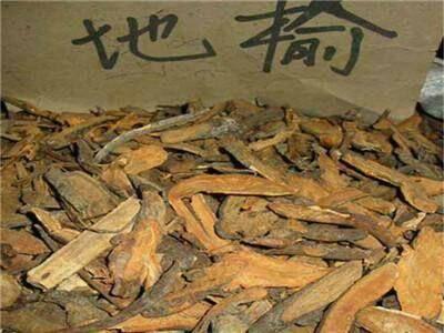 亳州譙城區地榆 一斤包郵,無需運費