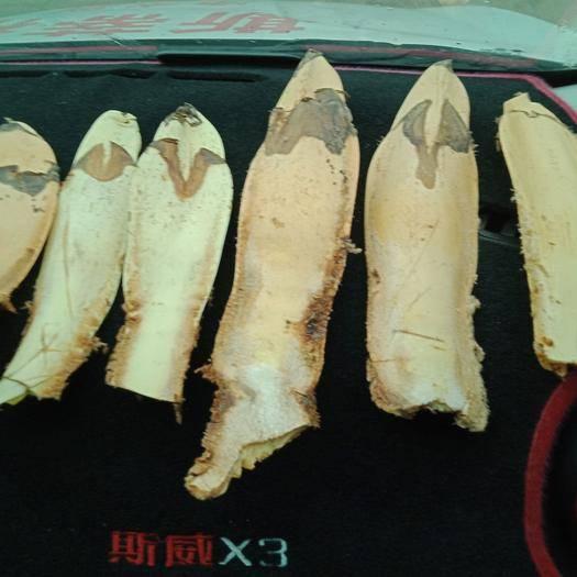 恩施土巴东县棕包