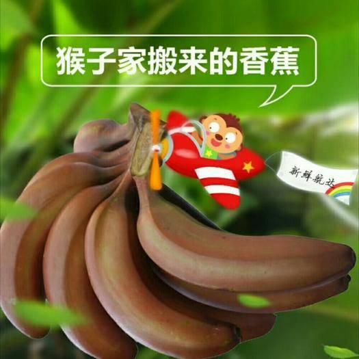 东莞市火龙蕉 八成熟