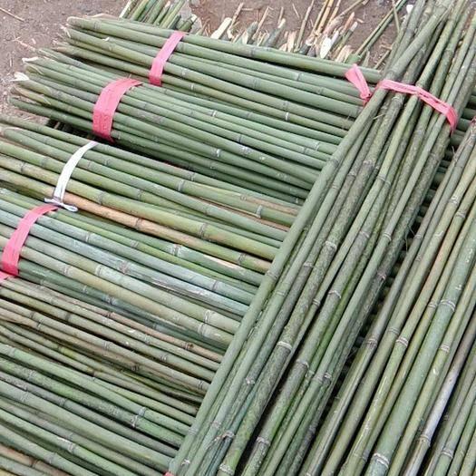 衡陽耒陽市菜架竹