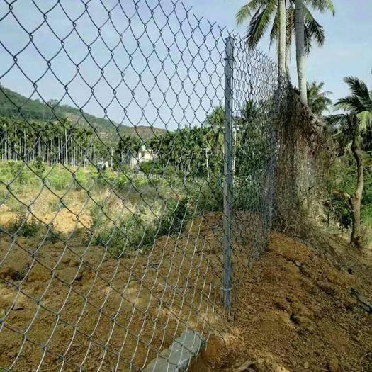 安平县护栏网/围网 镀锌勾花网 圈地围栏网 圈牛羊网 铁丝网 结实耐用