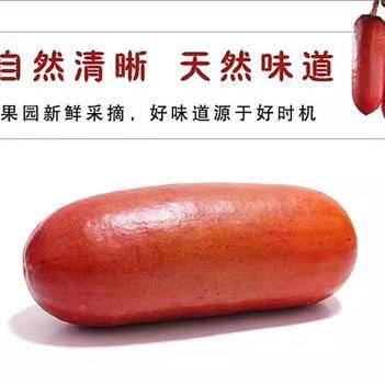 红香蜜种子 茹蜜果种子香茹蜜种植精选种子