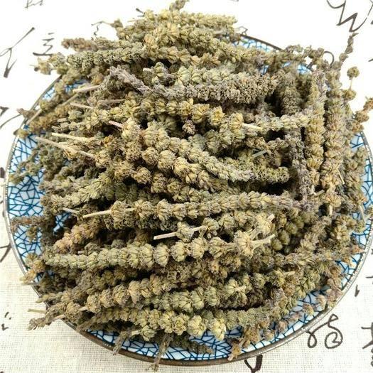 安國市荊芥  荊芥穗