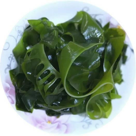 威海裙带菜 产地直发 脱水半干新鲜一斤起包邮