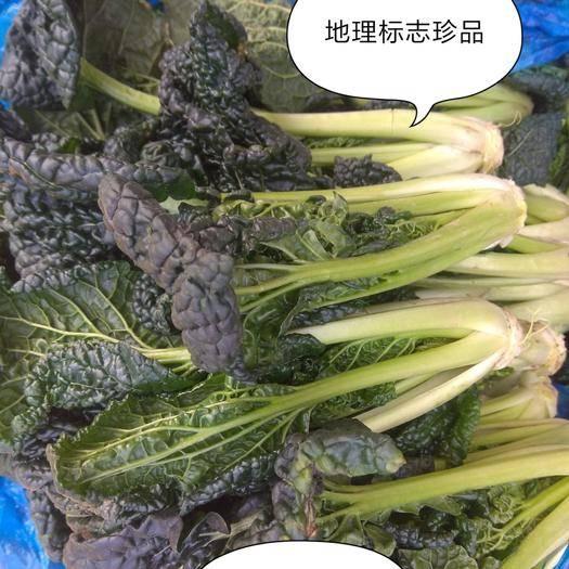 江苏省扬州市宝应县乌塌菜  核桃乌青菜