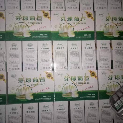 山东省潍坊市寿光市玉兰菜  供应玉兰菜芽球菊苣