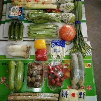 红瓜  套菜精品