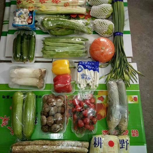 山东省潍坊市寿光市红瓜  套菜精品