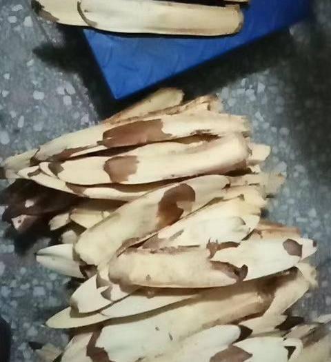 宜昌当阳市棕包