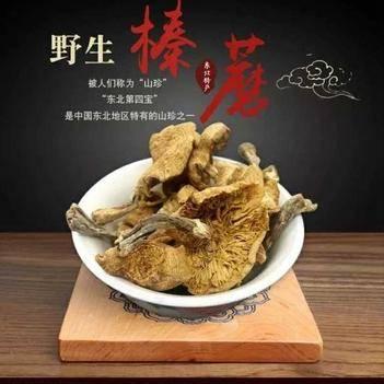 东北野生榛蘑