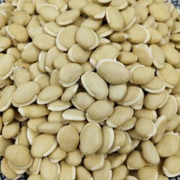 白扁豆 炒 玉林直销 药食同源 颗粒饱满 代打粉 袋装