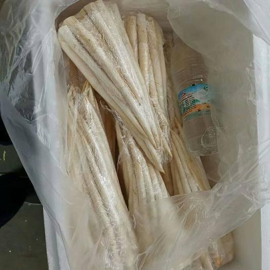 云南省红河哈尼族彝族自治州蒙自市象牙菜 散装 统货