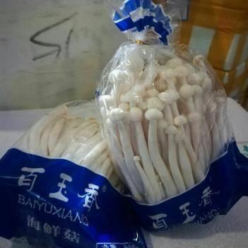 海鲜菇 人工种植 鲜货