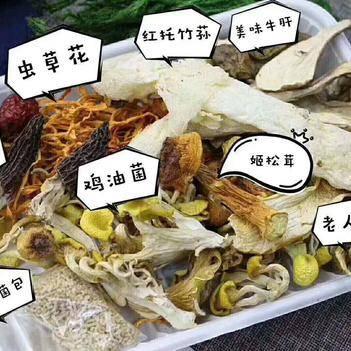蘑菇 云南七彩菌菇汤 7种品质菌菇养生汤