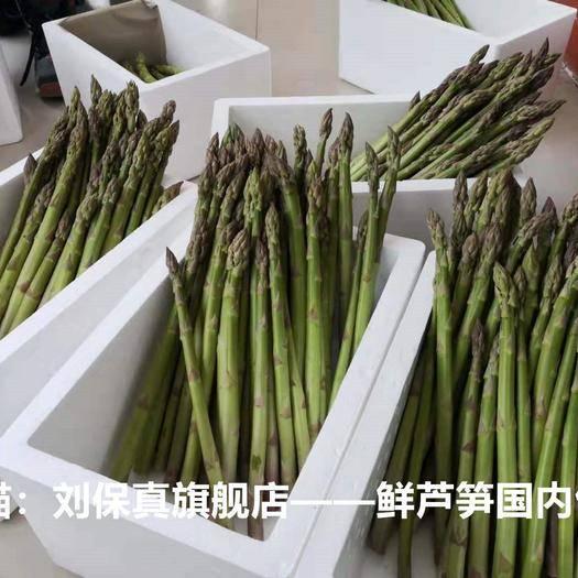 菏泽曹县 鲜芦笋自有种植现采现发冰鲜包邮