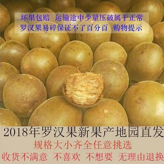 桂林七星区长滩果罗汉果 3 - 4两