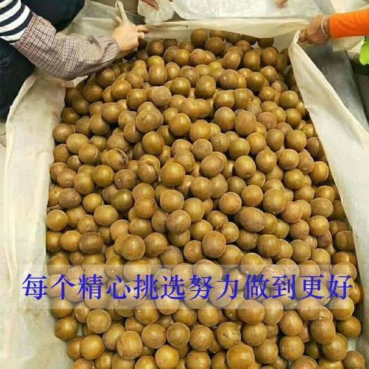 桂林七星区长滩果罗汉果 2 - 3两