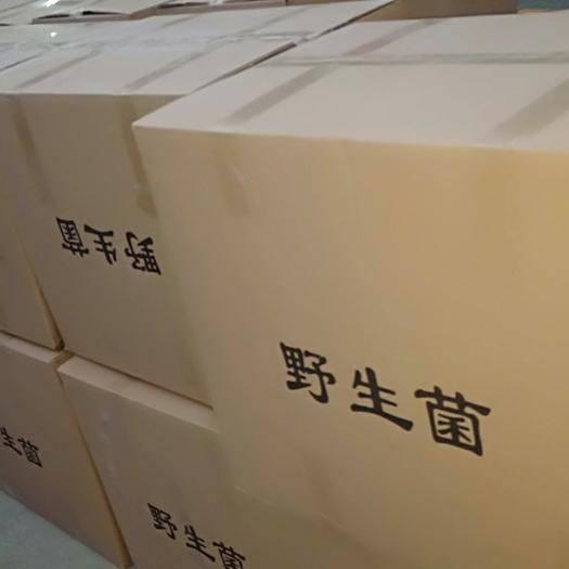 新乡辉县市干平菇 箱装 1年以上
