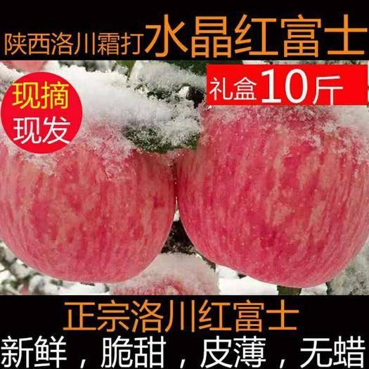 洛川县洛川苹果 特价秒杀延安新鲜水果脆甜包邮80到90mm大果多规格选择发货