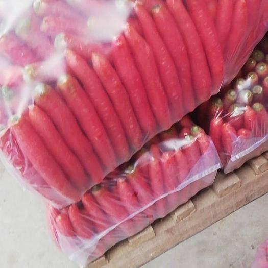渭南大荔县秤杆红萝卜