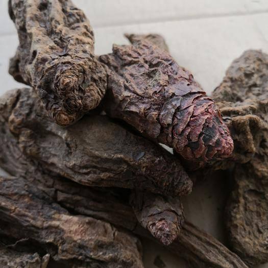 阿拉善左旗 一件代發 內蒙古秋三九金鎖陽 泡酒泡茶滋補料 煮粥燉肉滋補料