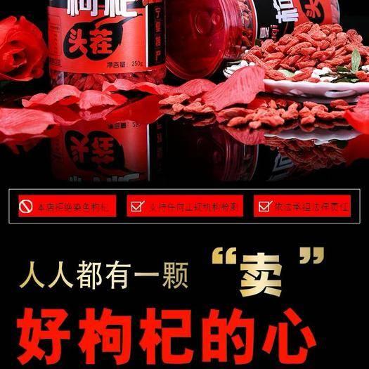 南京江宁区红枸杞种子