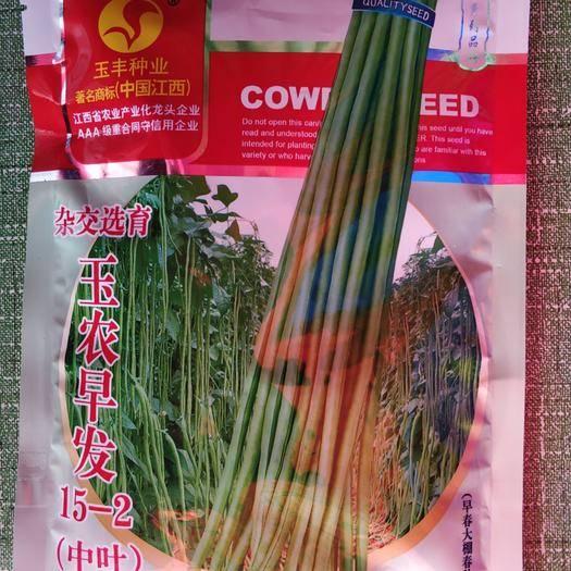 武汉长青豆角种子 翠嫩豆角种【50天可采收】
