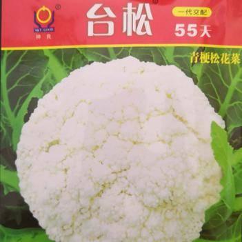松花菜种子 一级良种 ≥90%