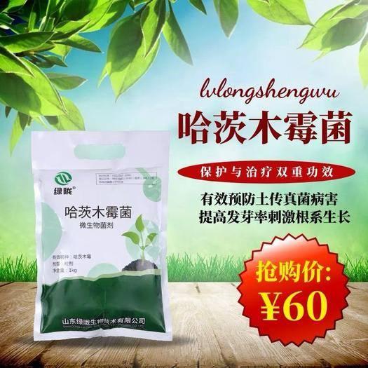 潍坊诸城市微生物有机肥 微生物肥料木霉菌蔬菜草莓大棚作物促长根部型 哈茨木霉菌10亿