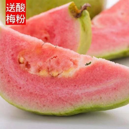漳州平和县红心芭乐 泡沫箱+真空+酸梅粉净重5斤装包邮(9-13个)无痕发货