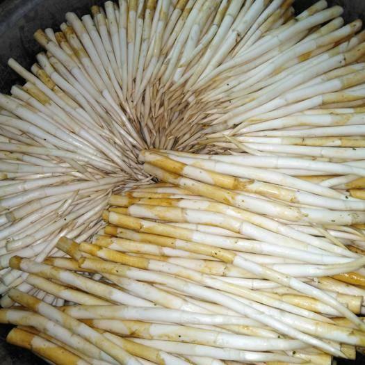 云南省红河哈尼族彝族自治州蒙自市象牙菜  散装 二级 泡沫箱+冰袋密封