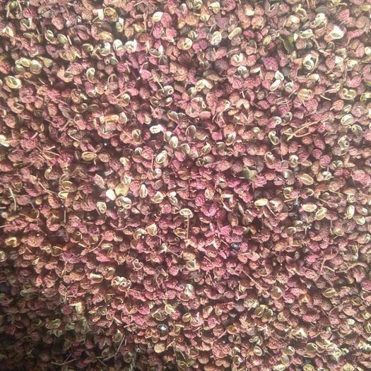枣庄 大红袍花椒特级干红纯。