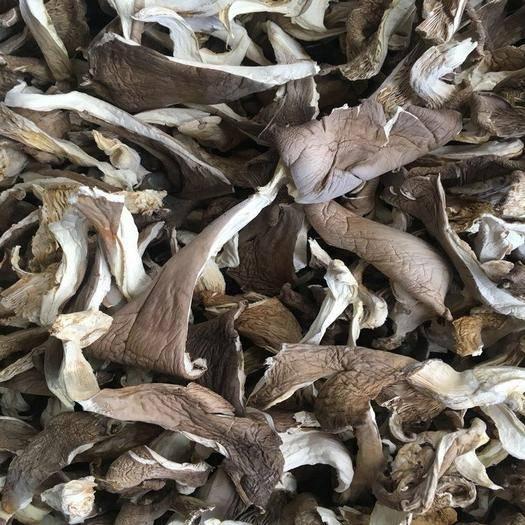 昆明官渡区 平菇条平菇干食用菌