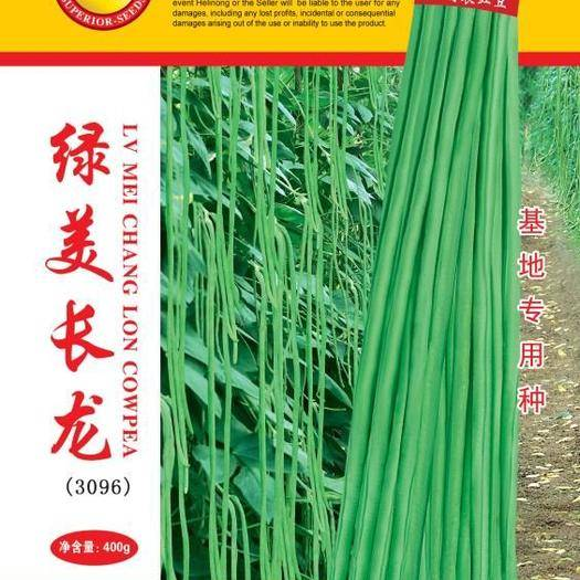 漳州南靖县油青豆角种子 持续翻花能力强,不露籽,无鼠尾、肉质厚,品质好,耐老化。