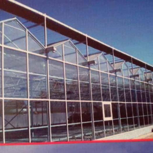 天津玻璃温室大棚