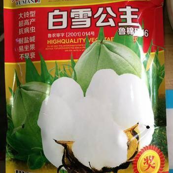 棉花种子 棉花薄膜包衣籽 杂交种 ≥95%