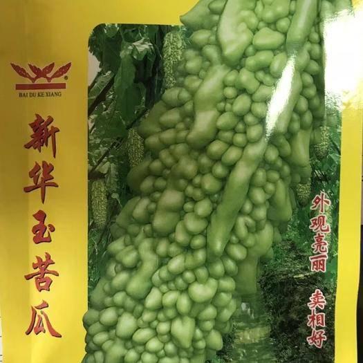 南靖縣白玉苦瓜種子 雜交種 外觀亮 產量高 賣相好