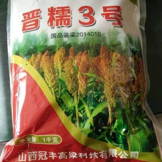 襄樊襄州區晉糯3號高粱種子 雜交種 ≥85%